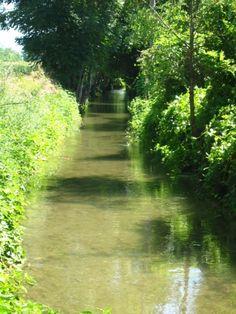 Vivi la Provincia Online rio Morla sud a Zanica