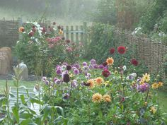 Don't you love these days as late summer slips into early Autumn; not quite frosts, yet, but heavy, wet dews and misty mornings and then burning hot afternoons?