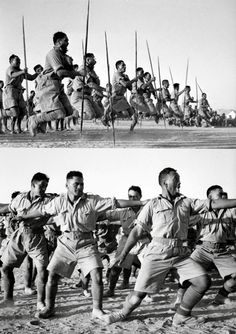 Members of the Maori Battalion performing a Haka for the King of Greece at Helwan, Egypt in June 1941. Haka is is a traditional war cry, dance, of the Māori people of New Zealand. It is a posture dance performed by a group, with vigorous movements and stamping of the feet with rhythmically shouting accompaniment.It is also performed for welcoming distinguished guests Military Gear, Military History, Polynesian People, Erwin Rommel, Maori People, Best Friends Sister, Warrior Spirit, Maori Art, New Zealand Travel