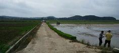 무안군 가뭄장기화에 예비못자리용 종자, 상토 지원