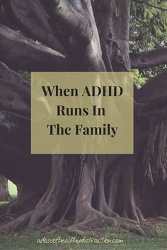 Research is showing us that ADHD is highly heritable, but it's not the end of the world.  Learn how ADHD is inherited + ADHD symptoms explained by a person who has it.