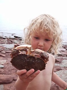Prince Edward Island.  Kids and PEI magic!