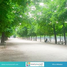 Did you know that walking through a place like this, with clean air and lack of noise pollution boost our immune system? But the most powerful benefits, a new study suggests, may result from the way trees and birds and sunsets gently tug – but never grab – at our attention.  For more customized #healthtips that are tailored to you, schedule a free consultation with our Reset Specialists, visit www.resetyourself.com