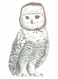 'Snowy Owl in Ushanka' by Candace Jean
