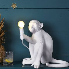 Are you interested in our Designer Monkey Light? With our SELETTI fun monkey light you need look no further.