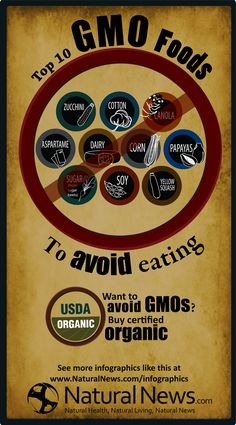Top-Ten-Gmo-Foods-To-Avoid-Eating-infographic