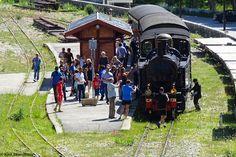 Train des Pignes steam train at Entrevaux station