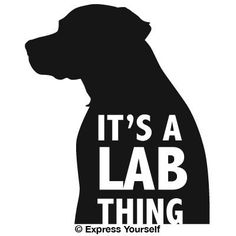 Its a Lab Thing (Black Small) Decal Sticker Hunting Dog Collection Labrador Retriever