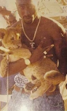 This is what I call RARE. Is this a pic of Tupac holding Simba! Tupac Wallpaper, Rapper Wallpaper Iphone, Rap Wallpaper, Iphone Wallpaper Grunge, Collage Mural, Bedroom Wall Collage, Photo Wall Collage, Tupac Pictures, Tupac Art