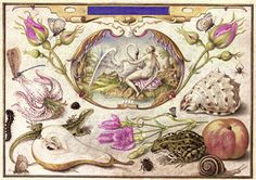 Leda and the Swan, surrounded by flora and fauna including a Stargazer Lily (Lilium 'Stargazer'), a Common Lizard (Lacerta vivipara), a Common Pear (Pyrus communis), a stem of Pinks (Dianthus caryophyllus), by Joris Hoefnagel