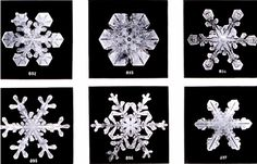These Are The First Known Photos Of Snowflakes Ever Made: Shot By A Vermont Farmer In 1885 #photography #photo http://www.shutterbug.com/content/these-are-first-known-photos-snowflakes-ever-made-shot-vermont-farmer-1885#22qkYwBdFJVjDakd.97