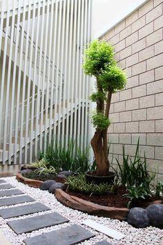 Parterre avec cailloux id es d co conseils et photos for Plantes pour jardin moderne