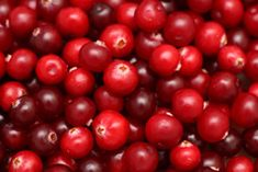 cranberries - for a table tent I'm working on that will go in the Bellingham Senior Center. I will use this as on of my sources.