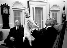 Dogs of the White House: The Presidential Pet Museum