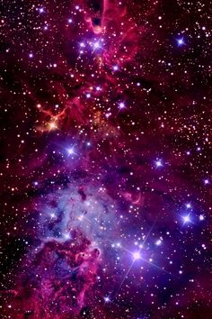 The Christmas Tree Cluster, Fox Fur Nebula and Cone Nebula in the constellation Monoceros