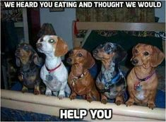 We wanna help!