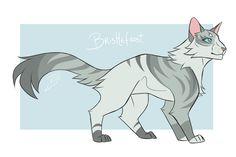 """bristlefrost"" - M. Warrior Cats Quiz, Warrior Cats Fan Art, Warrior Cats Art, Creature Drawings, Animal Drawings, Warrior Cat Drawings, Cat Reference, Fox Dog, Cats Musical"