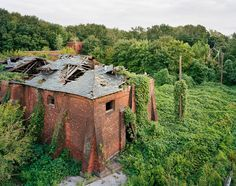 Exploring the East River's Lush, Lonely North Brother Island