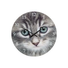 Circular Glass Faced Cat Clock Measures 17 cm diameter Wall Hanging Free Standing In stock ready for immediate dispatch Quality quartz movement