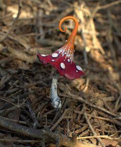Dark red orange magic mushroom polymer clay toadstool par Petradi