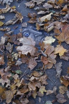 David Zinn This is Art, not Mine nor yours, but It deserves to be seen...by everyone...Share it...