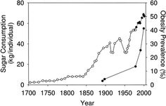 sugar-consumption-in-uk-and-usa-(1).png