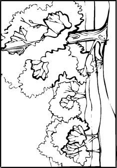 Download Landscapes Coloring Pages | Drawing Ideas for Kids ...
