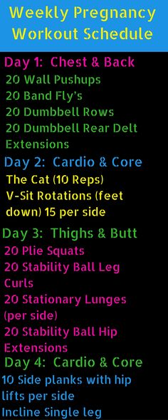 12 Week pregnancy workout to have a fit pregnancy and not gain a lot of weight. http://michellemariefit.com/weekly-pregnancy-workout-schedule/