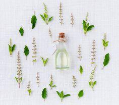 Huile végétale et hydratation. Ici on parle nourriture et hydratation de la peau. (parce que c'est PAS la même chose !) http://naturopathie-lyon.fr/huile-vegetale-et-hydratation/ … (Et on fait ça bien)
