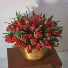 Warming up this late winter with with red hot locally grown tulips in a gold tone hammered metal vase, by Gardenia Organic