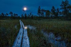 Moonlight by Ilari Lehtinen on Finland Pagan Beliefs, Nordic Vikings, Dark Night, Night Time, The Great Outdoors, Moonlight, Photo Art, Art Photography, Country Roads