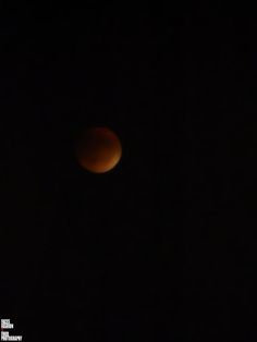 BLOOD MOON IN THE MONTREAL SKY... by Richelle Desiree
