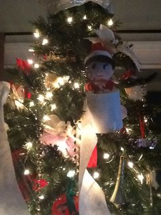 The elf toilet papered the tree....naughty elf