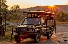 South Africa Tours I Private & Guided Tour Packages - Cape Town Top 10 Tours, Excursions & Things To Do (Shore Excursions - Honeymoon - Experiences - Tickets -Trips & Activities) - Johannesburg - Durban-Garden Route - Luxury Safari & Custom Full Day St Lucia Hotels, Game Reserve, Tour Operator, African Safari, Day Tours, Cape Town, South Africa, Journey, Travel