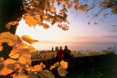 Best places to travel this October Best Places To Travel, Places To Visit, Switzerland Tourism, Book Festival, City Limits, Dark Skies, Elba, Travel Deals, Pilgrimage