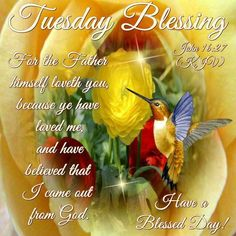 Tuesday Blessings day good morning tuesday tuesday quotes tuesday blessings…