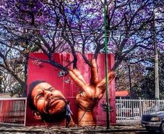 Gallery* Graffi-Trees: quando l'arte urbana incontra la natura. La urban-art ha cercato nell'ambiente circostante un valido alleato per sprigionare l'immensa creatività degli artisti del graffito che sfruttano alberi e piante, come spunto per le loro opere, spargendo qua e là per il mondo un connubio tra creatività e passione per l'ambiente.