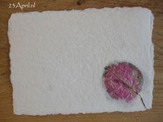 Je kunt in het handgeschept papier allerlei gedroogde bloemen verwerken.