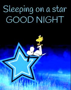 Good Night Quotes Images, Good Night Messages, Charlie Brown Quotes, Charlie Brown And Snoopy, Snoopy Love, Snoopy And Woodstock, Funny Day Quotes, Happy Birthday Dear Friend, Snoopy Pictures