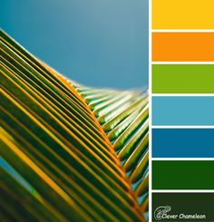 Summer Foliage color scheme from Clever Chameleon. Bright blues, yellows and greens.