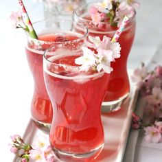 The new drink of spring! Cranberry Raspberry Margarita.