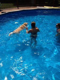 My daughter and Ralph in our home pool.