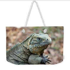 Weekender Tote Bag Beach Bag Iguana Animal by BACKtoBASICSbags