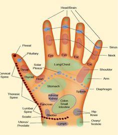 Reflexology Hand Chart http://www.yogaclub.us/