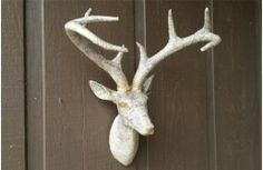 Our Reindeer Head is a beautiful wall mount head! For more Paper Mache Taxidermy ideas, please visit Decor Steals. www.DecorSteals.com.