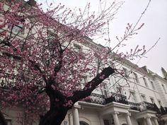 OOTD: Wandering around South Kensington