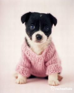 Bonito jersey y preciosos ojos azules.