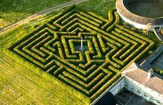 """ASHCOMBE MAZE & LAVANDER GARDENS MELBOURNE (AUSTRALIA) - Creato oltre 30 anni fa, questo labirinto è uno dei più impressionanti al mondo. Si trova nei giardini di Ashcombe e chi lo visita rimane praticamente """"intrappolato"""" dalle sue pareti, fatte di siepi alte più di tre metri."""