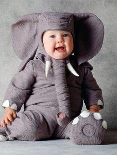 Elephant Costume by Tom Arma on Gilt.com