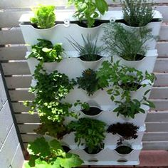 Minigarden Vertical Planters that conserve water by reducing evaporation.